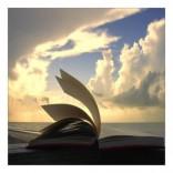 Lecturas y webs de verano (II)